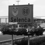 Селенча